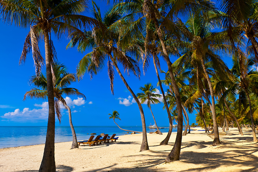 Florida Paradise-in-Florida-Keys