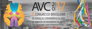 avc2017b